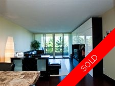 Vancouver Heights Condo for sale: Boundary Views 2 bedroom 872 sq.ft. (Listed 2010-08-25)